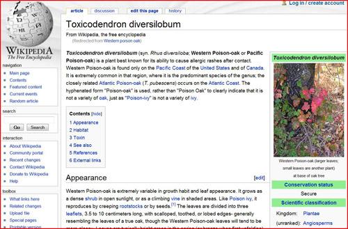 wikipedia2_small